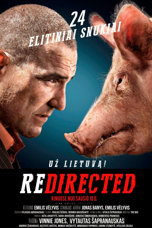 FF_Redirected_Poster